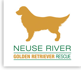 Neuse River Golden Retiever Rescue