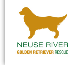 Neuse River Golden Retriever Rescue